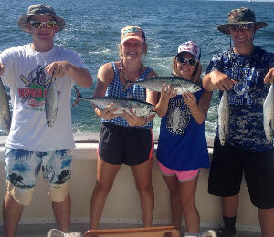 A nice inshore charter catch of spanish mackerel and tunas